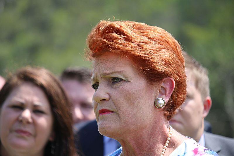 Pauline Hanson appears with a stern expression