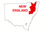 New England electorate map